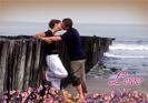 Effetto Love Special - Foglie