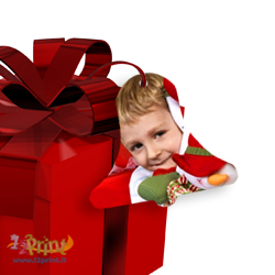 Addobbo Natale Campana