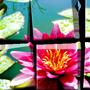 Mosaico Ceramica 20x30